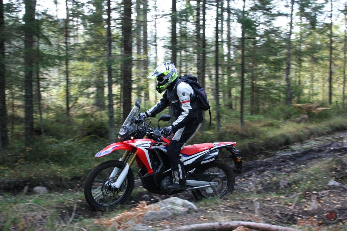 Test Honda CRF250Rally 16